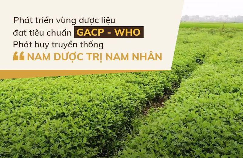 Vườn dược liệu Đỗ Minh Đường